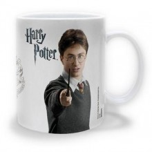 Harry Potter Krus