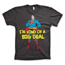 Superman - I'm Kind Of A Big Deal T-Shirt