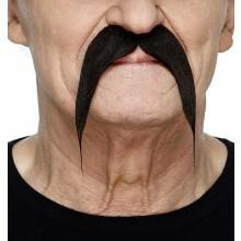 Moustache Fu Manchu