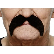 Moustache Hvalros