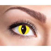 Farvede Linser Yellow Cat