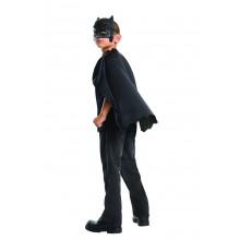 Maske & Kappe Batman Barn