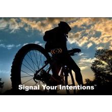 Signalsystem Til Cyklen