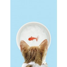 Katteskål Med Guldfisk