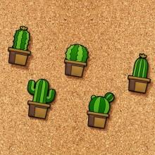 Tegnestifter Kaktusser 5-pak