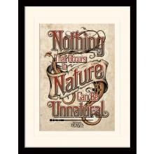 Fantastic Beasts Billede Nature Can't Unnatural 30x40 cm