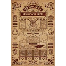 Harry Potter Plakat Quidditch