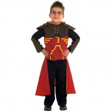 HARRY POTTER - QUIDDITICH KOSTUME