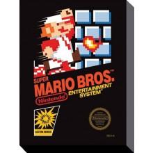 Super Mario Bros Nes LÆRred 30 X 40 Cm