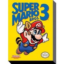 Super Mario Bros 3 LÆRred 30 X 40 Cm